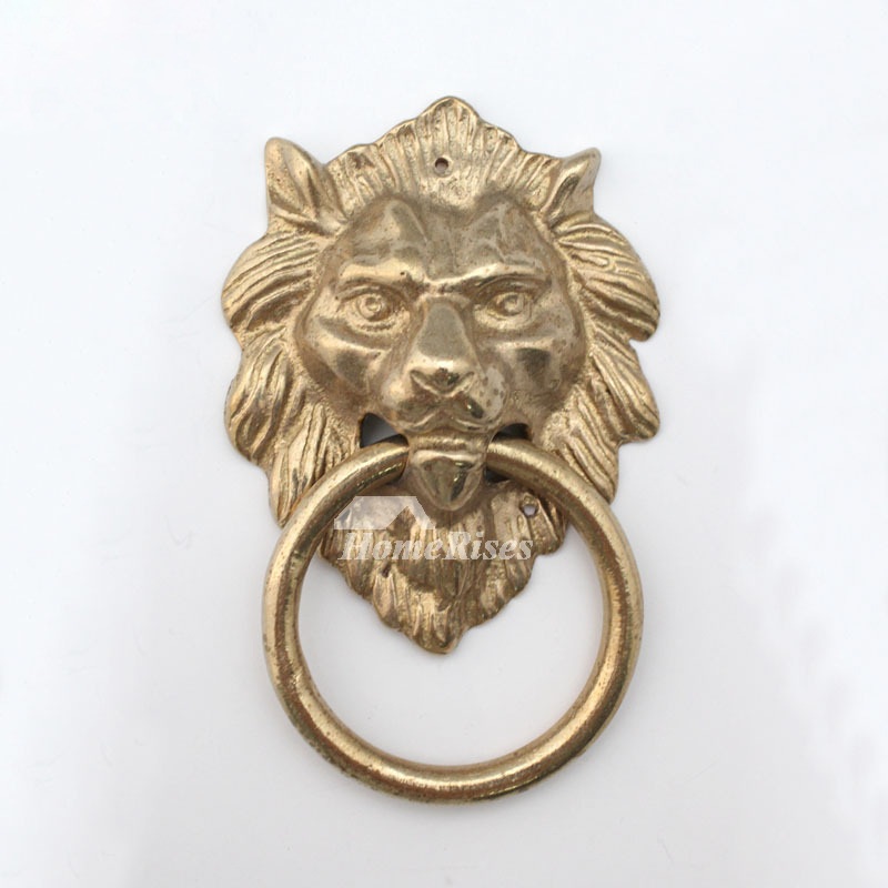 door large lion knocker knockers