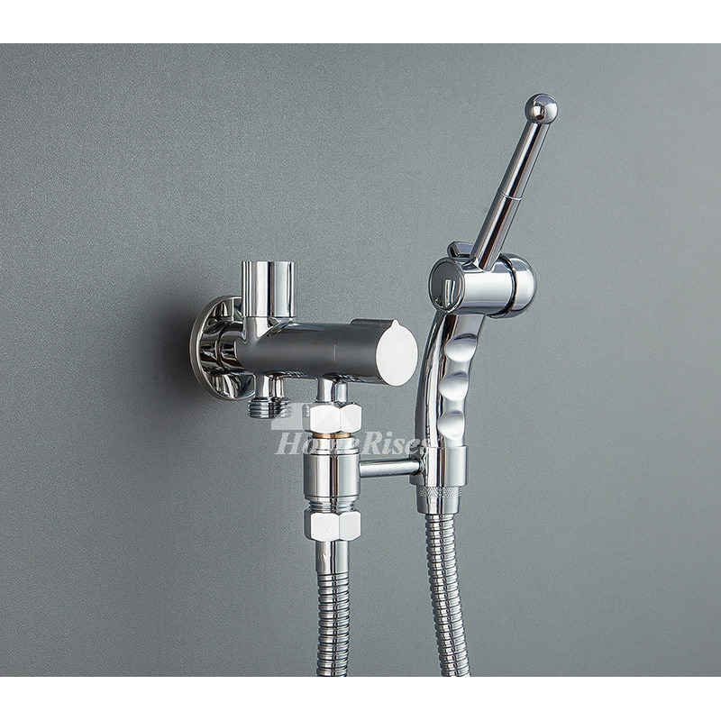 Solid Abs Wall Mounted Chrome Toilet Bidet Spray Filtering Modern
